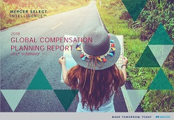 Global Compensation Planning Report image